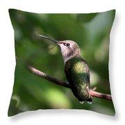 Hummingbird - Ruby-throated Hummingbird - Detail Throw Pillow