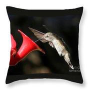 Hummingbird Sigh Throw Pillow