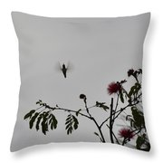 Hummingbird Silhouette I Throw Pillow