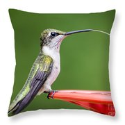 Hummingbird Sticky Her Tongue Out Throw Pillow