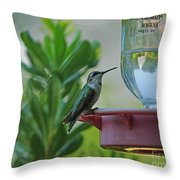 Hummingbird Still Life Throw Pillow