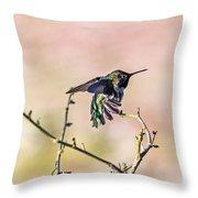 Hummingbird Stretch Throw Pillow