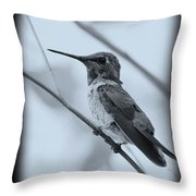 Hummingbird With Old-fashioned Frame 1 Throw Pillow