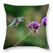 Hummingbird With Purple Verbena Throw Pillow