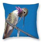 Hummingbird Yawn With Tongue Throw Pillow