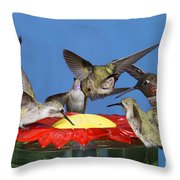 Hummingbirds At Feeder Throw Pillow