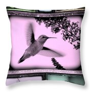 Hummingbirds In Old Frames Collage Throw Pillow