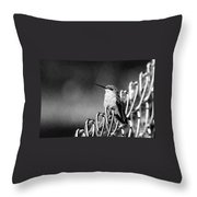 Hummy On Fence B And W Throw Pillow