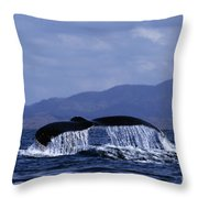 Hump Backed Whale Tail With Cascading Water Throw Pillow