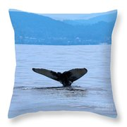 Humpback In Monterey Throw Pillow
