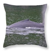 Humpback Spew Throw Pillow