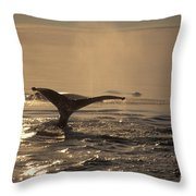 Humpback Whale Feeding Throw Pillow