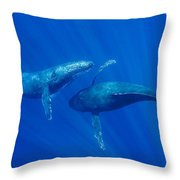 Humpback Whale Males Interacting Maui Throw Pillow