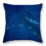 Humpback Whale Mother And Calf Hawaii Throw Pillow