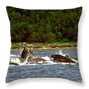 Humpback Whales Feeding Throw Pillow