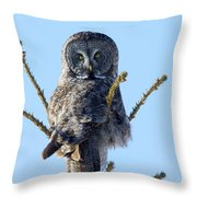 Hundred Mile Stare Throw Pillow