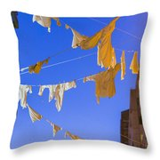 Hung Out To Dry 2 Throw Pillow