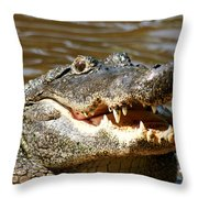 Hungry Alligator Throw Pillow