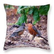 Hungry Baby Robin Throw Pillow