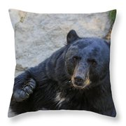 Hungry Bear Throw Pillow