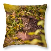 Hungry Beaver Throw Pillow