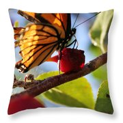 Butterfly And The Cherry Throw Pillow