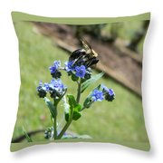 Hungry For Pollen Throw Pillow