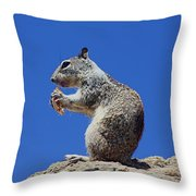 Hungry Ground Squirrel Throw Pillow