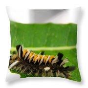 Hungry Hairy Caterpillar Throw Pillow