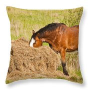 Hungry Horse Throw Pillow