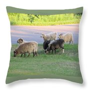 Hungry In Life  Throw Pillow