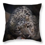 Hungry Leopard Throw Pillow