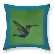 Hungry Little Hummingbird 6 Throw Pillow