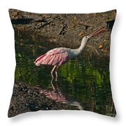 Hungry Pink Spoonbill Throw Pillow