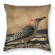Hungry Red-bellied Woodpecker - Melanerpes Carolinus Throw Pillow