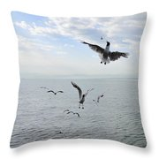 Hungry Seagulls Flying In The Air Throw Pillow