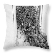 Hungry Shoulders  Throw Pillow