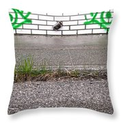 Hungry Steps  Throw Pillow