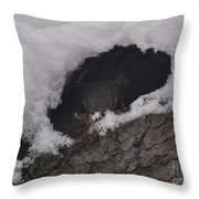 Hunkered Down For The Storm Throw Pillow