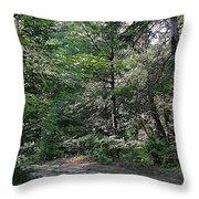 Hunter's Dam #2 Throw Pillow