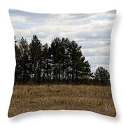 Hunter's Raised Blind In A Spring Field Throw Pillow