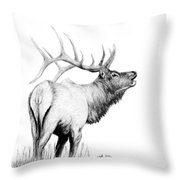 Hunters Target Throw Pillow