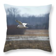 Hunting For Scraps Throw Pillow