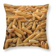 Husked Sweetcorn Throw Pillow