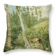 Hut In The Jungle Circa 1816 Throw Pillow by Aged Pixel