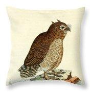 Hutum Owl  Throw Pillow