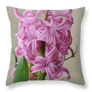 Hyacinth Pink Throw Pillow