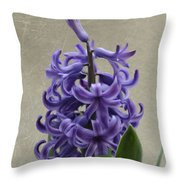 Hyacinth Purple Throw Pillow