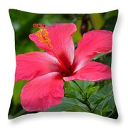 Hybiscus In Keei Throw Pillow