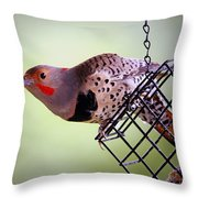 Intergrade Red Shafted And Yellow Shafted Northern Flicker Male Throw Pillow